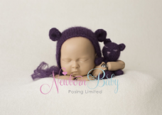 Purple Backdrop & Bear Bundle